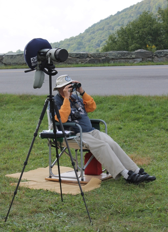 Jim Keighton watches for passing hawks at the Mahogany Rock Overlook